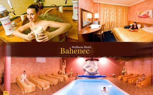 Pivní lázně a wellness procedury pro dva ve Wellness Hotelu Bahenec***