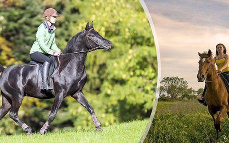Prázdninový půlden s koňmi na Hané pro začátečníky i pokročilé pro malé i velké jezdce.