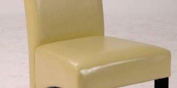 SCONTO WS 5109-1 PU+ PINIE Židle