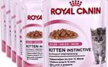 Krmivo pro koťata Royal Canin Kitten Instinctive in Jelly 12 x 85g