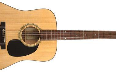 Akustická kytara Recording King RD-310