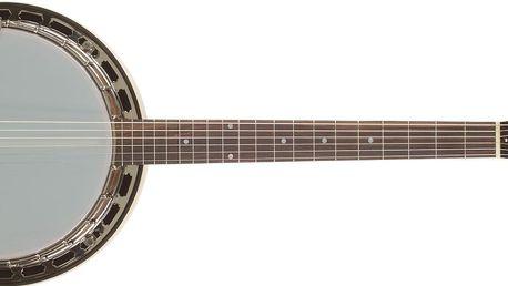 Šestistrunné banjo Recording King G25-BR