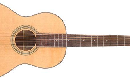 Akustická kytara Recording King RP-10
