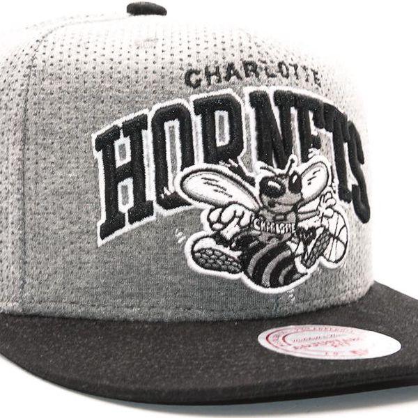 Kšiltovka Mitchell & Ness Baseline Team Arch Charlotte Hornets Grey Snapback