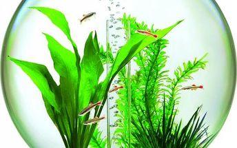 Kompletně vybavený 15 l kulatý akvarijní set v stříbrné barvě