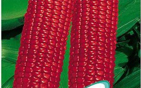 10 semínek - červená kukuřice