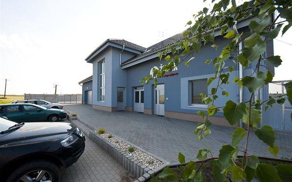 Penzion - Velké Bílovice, Česká republika, vlastní doprava, strava dle programu