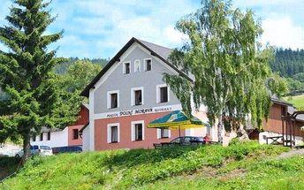 Až 7denní pobyt s polopenzí v penzionu Dolní Morava na úpatí Králického Sněžníku pro 2