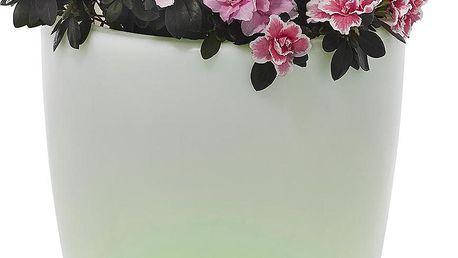 Tchibo, Květináč s LED