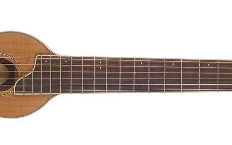Akustická kytara Washburn RO10RWC