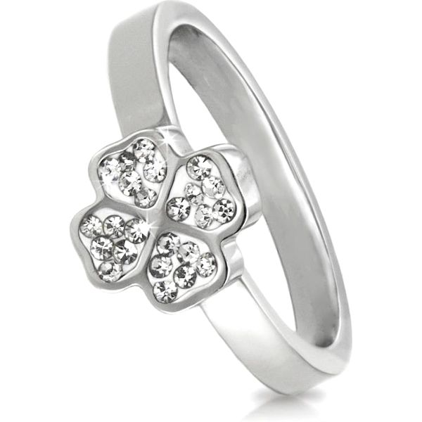Prsten čtyřlístek chirurgická ocel