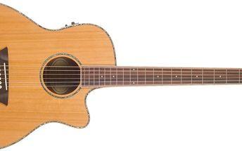 Elektroakustická kytara Washburn WG16SCE