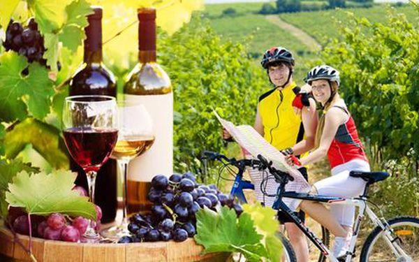 Vinařský pobyt s polopenzí pro dva na jižní Moravě
