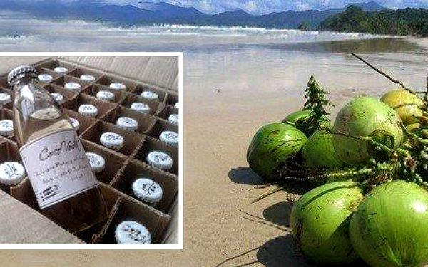 Kokosová voda - 5 nebo 10 ks po 200 ml