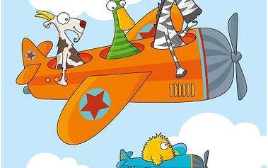 Nástěnný obraz - Letadlo