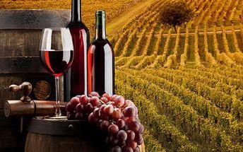 Za vínem na Moravu - až 4denní pobyt pro 2