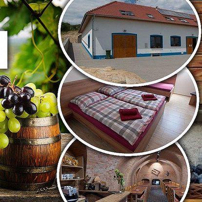 Vinařský pobyt pro dvě osoby a dítě do 10 let zdarma v Bořeticích v Penzionu U Nováků s polopenzí.