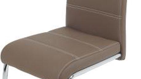 Kožená židle v několika barevných variantách