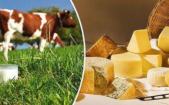 Navštivte náš kurz a naučte se domací přípravu sýrů, jogurtů a mléčných výrobků.