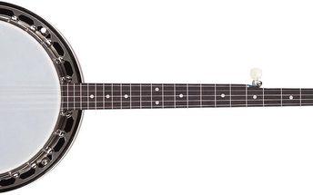 Banjo Recording King RK-R15-BR