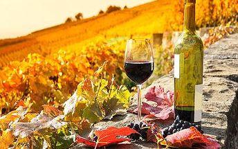 Vinařský pobyt s degustací vína na jižní Moravě pro DVA