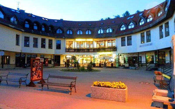 Penzion Mona - Harrachov, Česká republika, vlastní doprava, strava dle programu