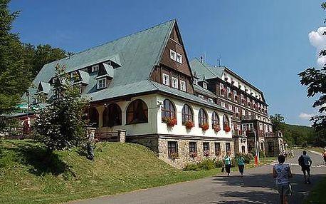 Hotel Tanečnica*** s neomezeným vstupem do vyhřívaného bazénu a polopenzí pro 2 osoby + děti do 3 let ZDARMA