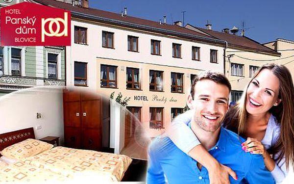 Relax v hotelu Panský dům Blovice nedaleko Plzně včetně polopenze pro 2 osoby + děti do 3 let ZDARMA