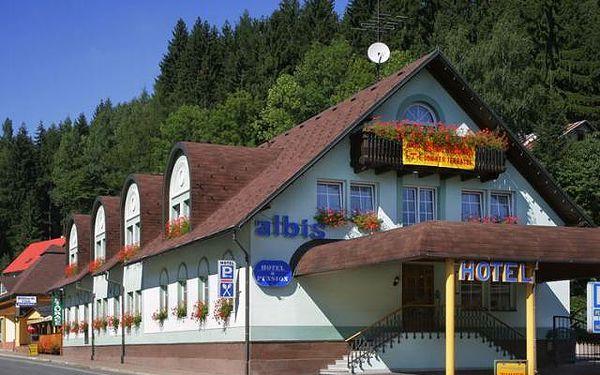 Hotel Albis - Vrchlabí, Česká republika, vlastní doprava, strava dle programu