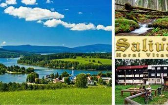 LIPENSKO a ŠUMAVA: 4 dny s polopenzí pro 2 v Hotelu Salivar kousek od Lipna a Boubína. Volné září.
