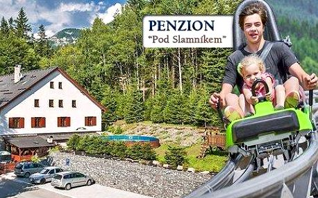 3-4 denní pohoda na Dolní Moravě v pensionu pod Slamníkem
