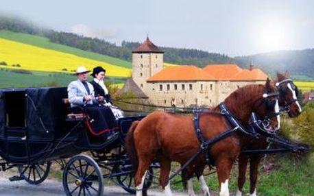 20minutová PROJÍŽĎKA KOČÁREM až pro 5 osob kolem hradu ŠVIHOV s dvojspřežím a upomínkovým dárkem!