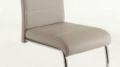 Jídelní židle SCONTO FLORA S Židle