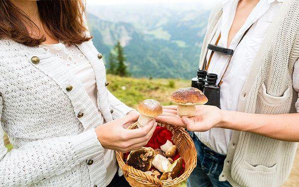 Až 6denní pobyt se snídaněmi v hotelu U Červené lišky v Krušných horách pro 2