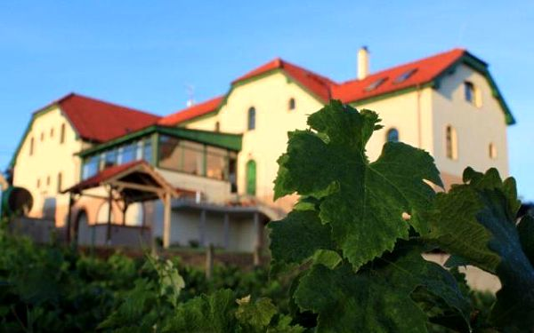 Hotel Vinohrad - Milotice, Česká republika, vlastní doprava, strava dle programu