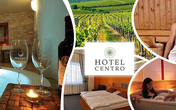 Wellness pobyt pro dvě osoby ve Wine Wellness Hotelu Centro Hustopeče. Víno u večeře neomezeně!!