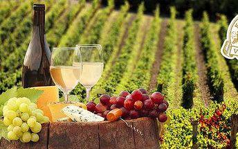 Vstupenky pro celou rodinu na Kunětické vinobraní 2015