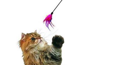 Karlie hračka Cat Dangler Feather 59 cm