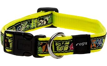 ROGZ FANCY DRESS obojek M Scooter Dayglo Floral