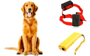 Stop štěkání: Obojky a přístroje proti psímu štěkání