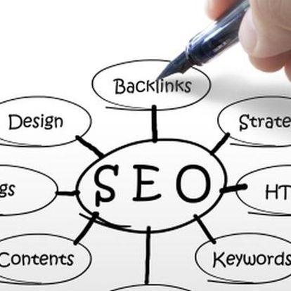 SEO – optimalizace webů pro vyhledávače pro každého / 1 hod konzultace