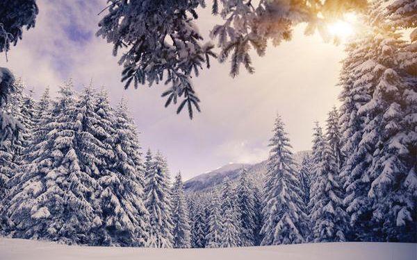 Zimní dovolená pro 1 s polopenzí v Alpách