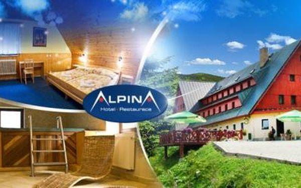 KRKONOŠE, Špindlerův Mlýn! 3 nebo 6 dní pro DVA s POLOPENZÍ, SAUNOU a VÍŘIVKOU v Hotelu ALPINA***!