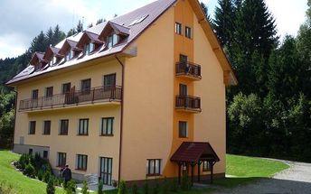 Apartmán(y) - Lipová-lázně, Česká republika, vlastní doprava, strava dle programu