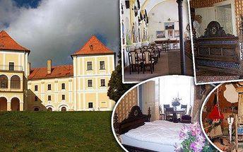 Zámek Letovice Jižní Morava! Prohlídka zámku včetně mučírny, hladomorny, jeskyně hlídaná drakem, ZOO koutek! V areálu také nádherný park a možnost posezení v restauraci!