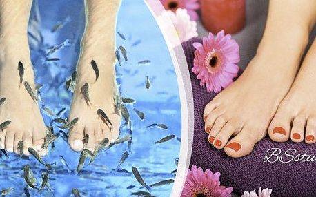 Dopřejte si péči o nohy, která bude zároveň i originální relaxací. Speciální rybí terapie pro jemnější chodidla či zmírnění projevů lupenky a ekzémů. Nakrmte rybičky a nechejte vyhladit vaši pokožku, spojte příjemné s užitečným!