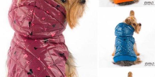 Psí vestička - super kousek do psího šatníku!
