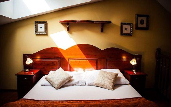 2 denní relaxační pobyt pro dva v hotelu Morris Česká Lípa superior