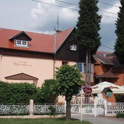 Penzion Villa Marion - Mariánské Lázně, Česká republika, vlastní doprava, strava dle programu