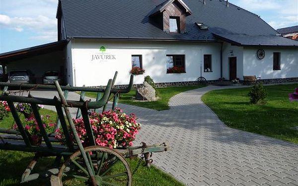 Penzion Javůrek - Křižánky, Česká republika, vlastní doprava, strava dle programu